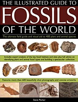 An Illustrated Guide to the Fossils of the World: A full-color directory and identification aid to over 250 plant and animal fossils, with 600 clear ... and artworks (Illustrated Guide to)