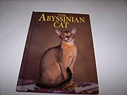 The Abyssinian Cat (Learning about Cats)