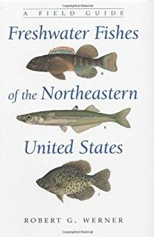 Freshwater Fishes of the Northeastern United States: A Field Guide (New York State Series)