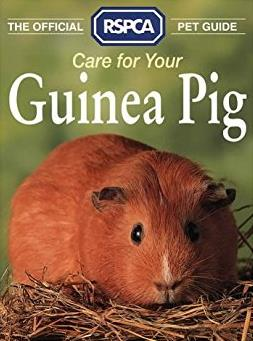 Care for Your Guinea Pig (RSPCA Pet Guide)